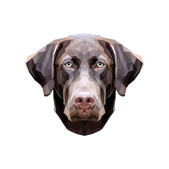 Hund niedrig poly. schokoladenlabor