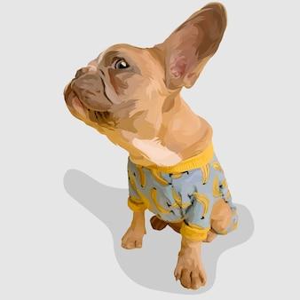 Hund realistische handgezeichnete illustrationen und vektoren