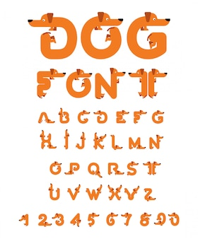 Hund schrift dackel-alphabet. beschriftung heimtier. abc-haustier