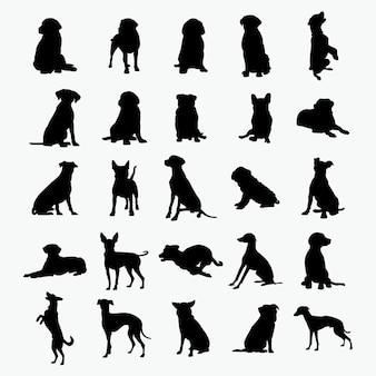 Hund silhouetten