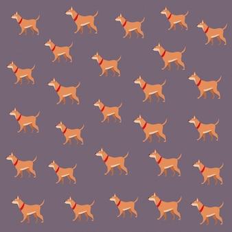 Hund tierhaustiertapete dekoration