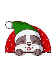 Hund trägt weihnachtsmütze