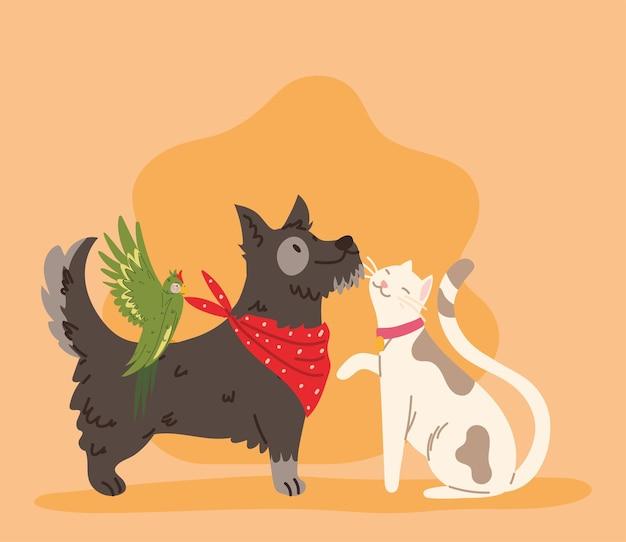 Hund und katze haustier