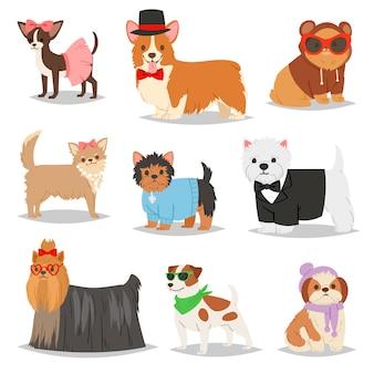 Hund welpen haustier tier hund charakter in hundekleidung der inländischen hundezucht illustration doggish satz von doggy terrier in hundehalsband auf weißem hintergrund