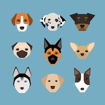 Hunde im flachen stil. haustier und stammbaum, wachhund und dalmatiner, hirte und mops