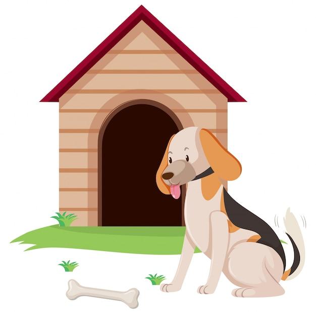 Hundehaustier mit knochen an der hundehütte
