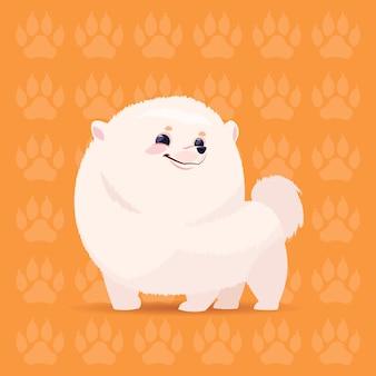 Hundepomerian-glückliche karikatur, die über abdruck-hintergrund-nettem haustier sitzt