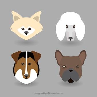 Hunderasse avatar flach sammlung