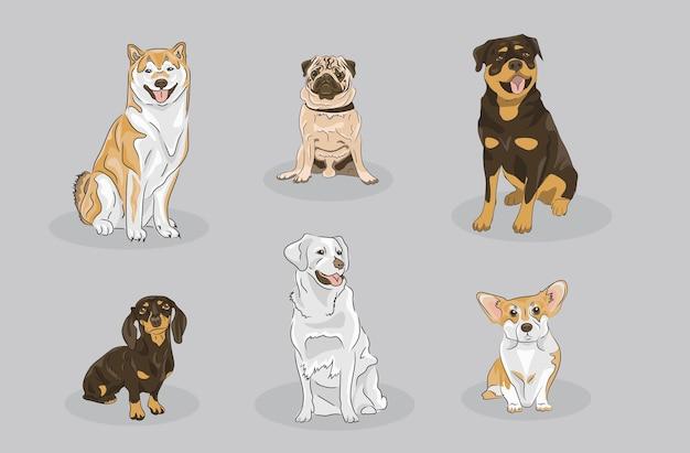 Hundeset, das verschiedene rassen enthält