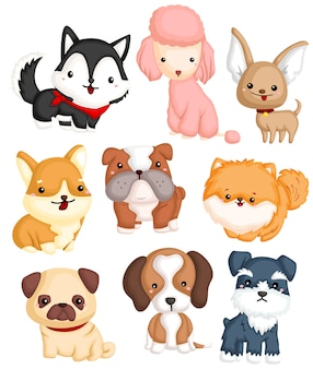 Hundetyp vector set