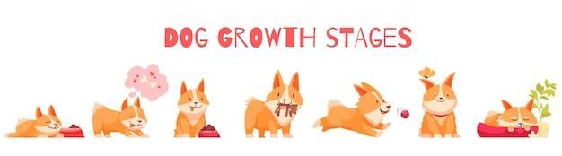 Hundewachstumsstufen zusammensetzung mit einer reihe von isolierten zeichentrickfiguren des welpen mit bearbeitbarer textillustration