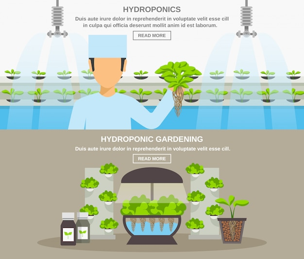 Hydroponic design banner