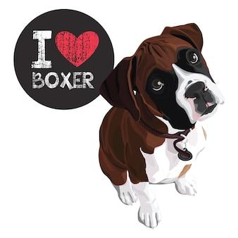 Ich liebe boxer