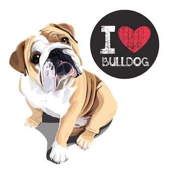 Ich liebe bulldogge