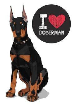 Ich liebe dobermann