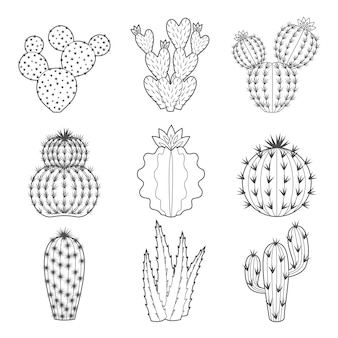 Icon-set kontur kaktus und sukkulenten