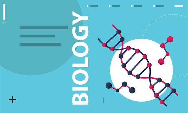 Illustration der biowissenschaften