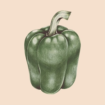 Illustration der gemüseaquarellart
