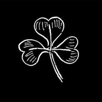 Illustration der pflanze