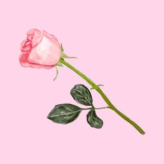 Illustration der rosafarbenen blume der zeichnung