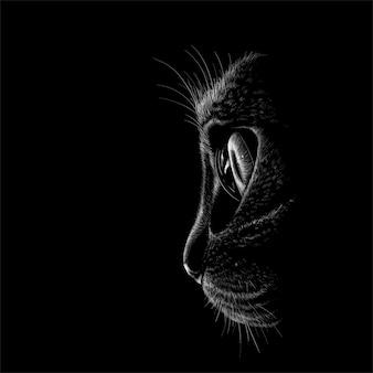 Illustration der schwarzen katze
