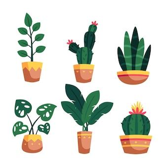 Illustration der zimmerpflanzensammlung