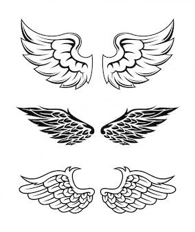 Illustration des flügel-sammlungs-satzes