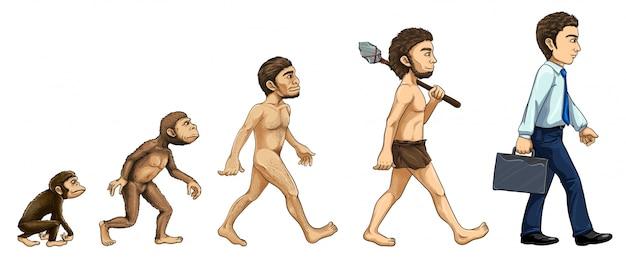 Illustration des prozesses der evolution