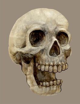 Illustration einer schädelikone für halloween