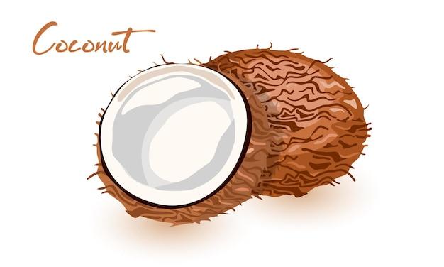 Illustration eines kokosnuss-ganzen, das in zwei hälften gerissen ist
