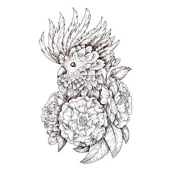 Illustration eines papageis.