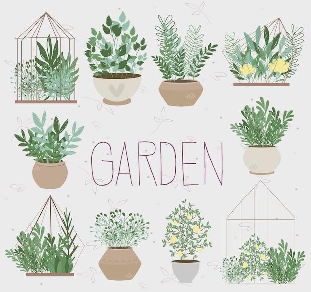 Illustration mit pflanzen im garten.