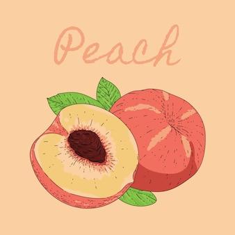Illustration pfirsich