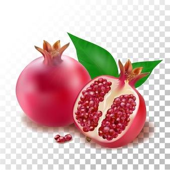 Illustration realistische granatapfelfrucht
