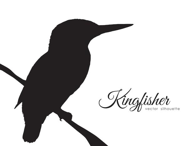 Illustration: silhouette des eisvogels, der auf einem trockenen zweig sitzt.