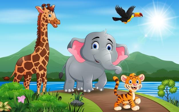 Illustration viele tiere, die auf der straße gehen
