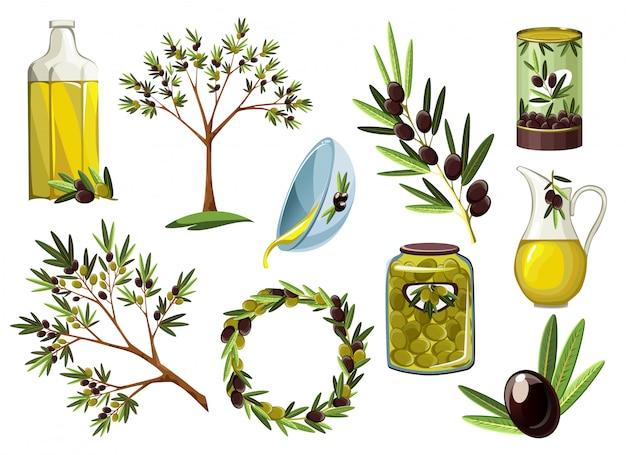 Illustrationen für olivenöletiketten, verpackungsdesign, naturprodukte, restaurant. olive dekorative ikonen. hand gezeichnete illustrationsschablonen für olivenölverpackung. öko-design