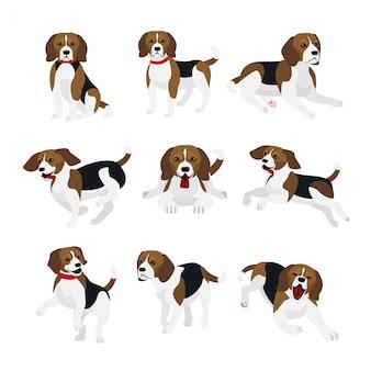 Illustrationssatz des niedlichen und lustigen beagle-hundes, lebhafte aktionen, spielend, springende hunde in.