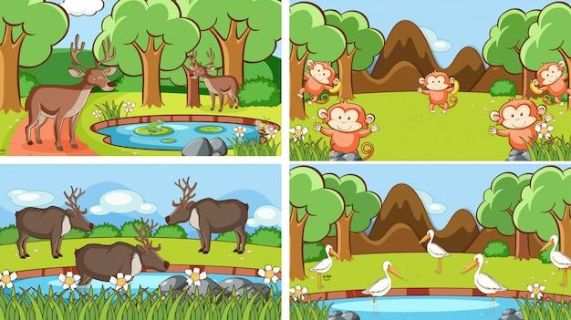 Illustrationsszenen von tieren in freier wildbahn