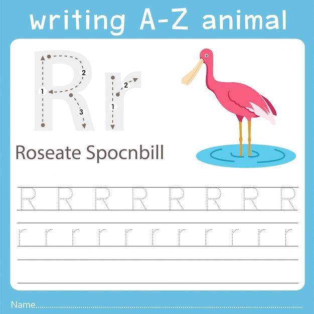 Illustrator, der ein tier des rosafarbenen spocnbills schreibt