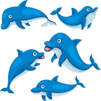 Illustrator des niedlichen delphins