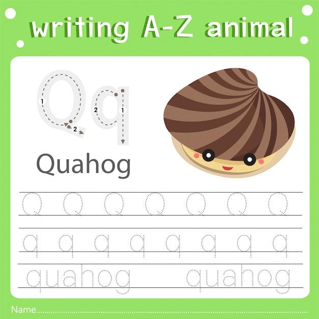 Illustrator des schreibens eines tier-q-quahogs