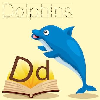 Illustrator von d für dolphins-vokabular