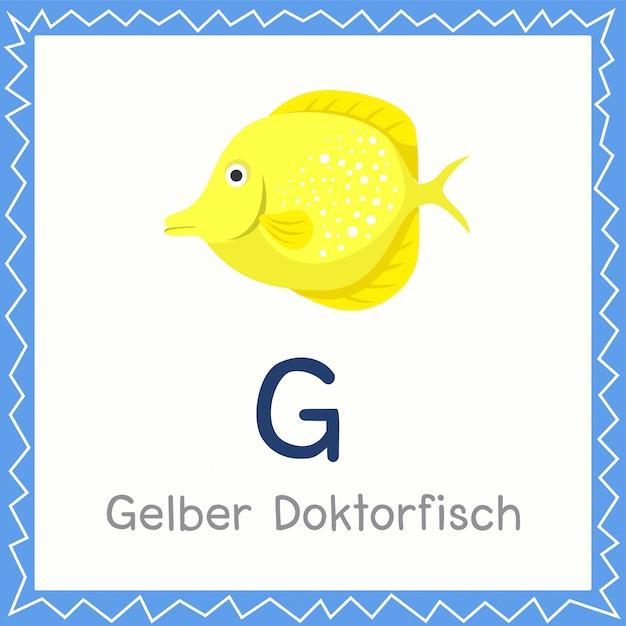Illustrator von g für gelber doktorfisch tier