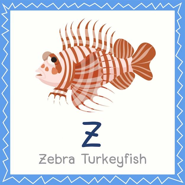 Illustrator von z für zebra turkeyfish-tier