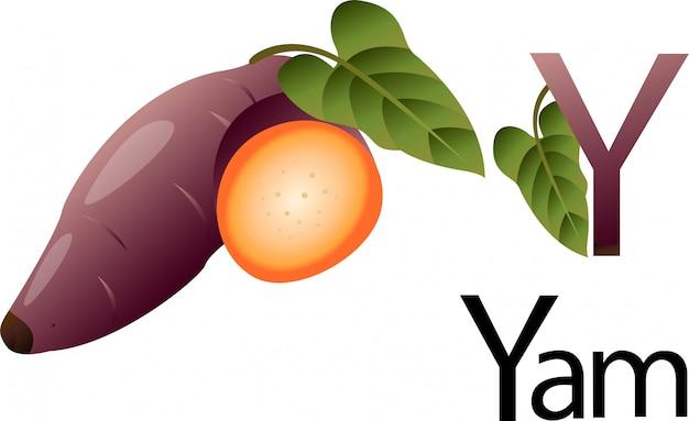 Illustrator y schrift mit yam