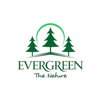 Immergrüne kiefer logo einfach grün