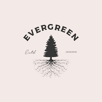 Immergrüne wurzel abzeichen logo design illustration