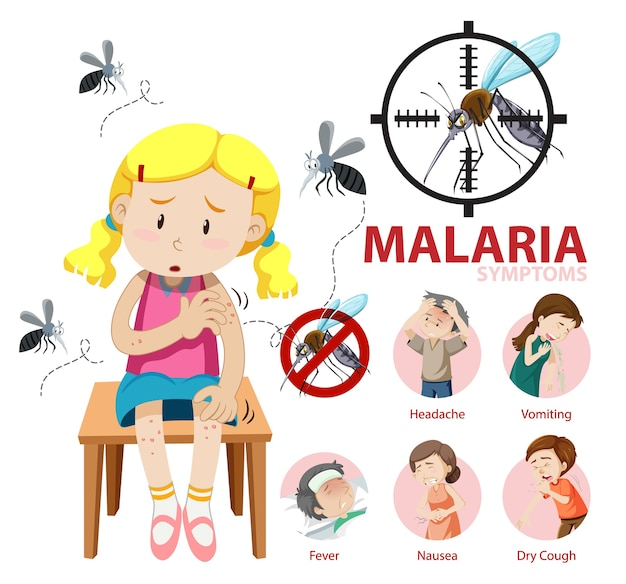 Infografik mit informationen zu malariasymptomen