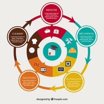 Infografik mit unterschiedlichen optionen zu studieren